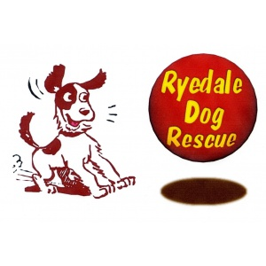 Ryedale Dog Rescue-328623